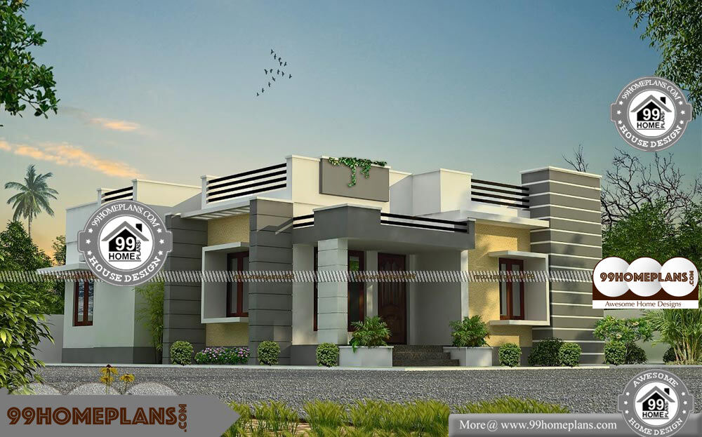 Single story narrow lot house plans with small simple for Narrow lot homes single storey