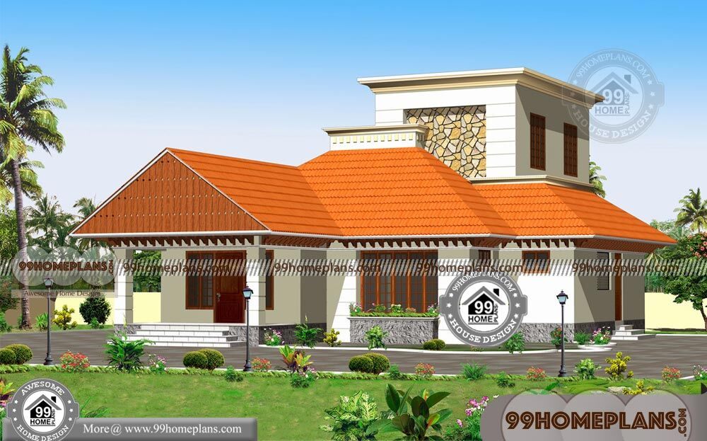 Traditional style home plans with double floor modern for Home design 99