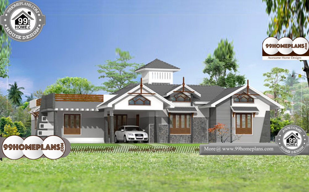 One Story Luxury House Plans - Single Story 2630 sqft-Home