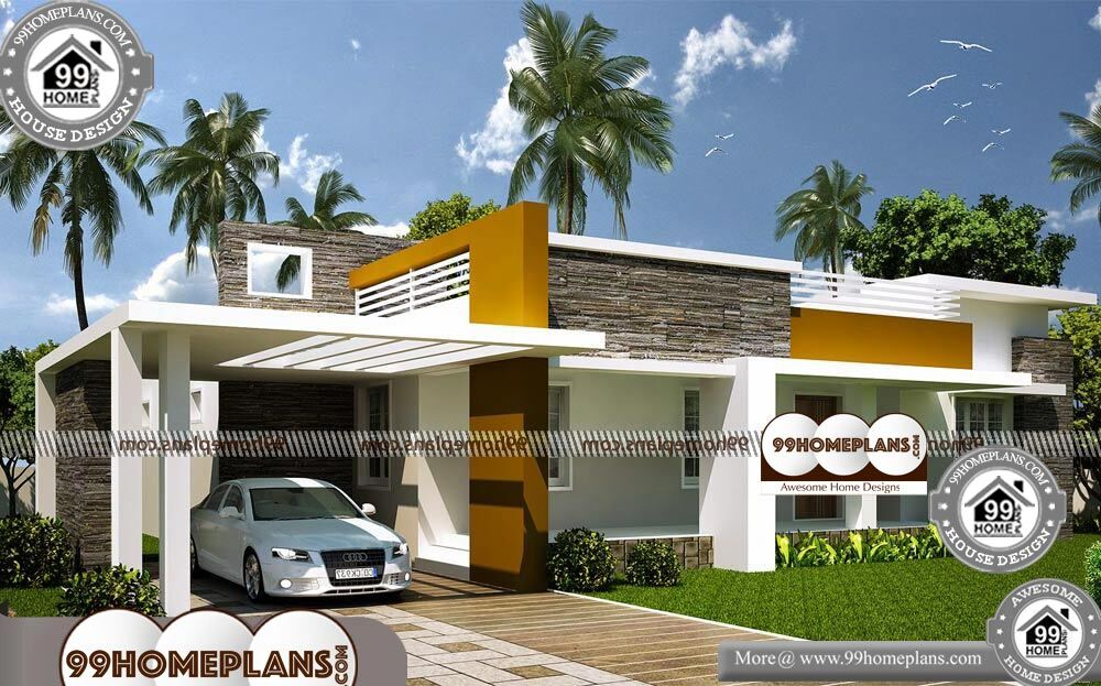One Story Luxury Home Plans - Single Story 1800 sqft-Home